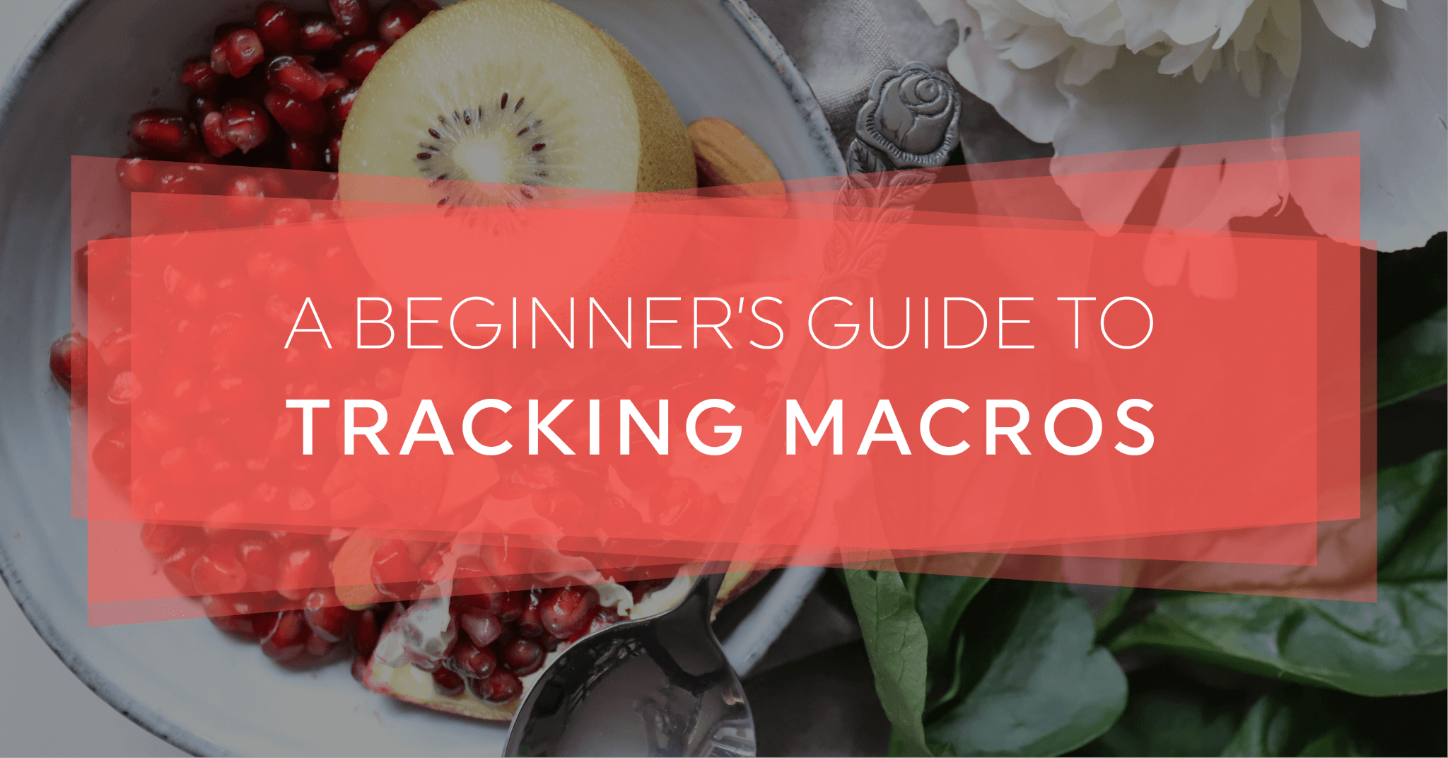 A Beginner S Guide To Tracking Macros Explained In 4