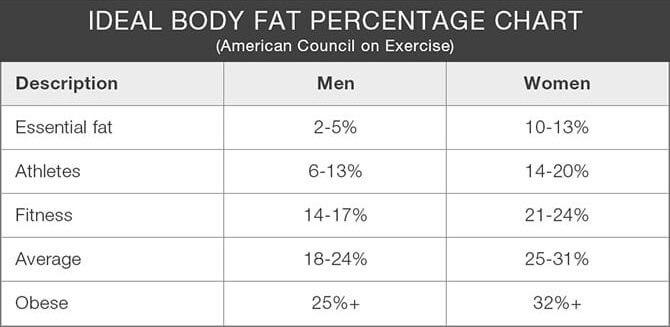 Body Composition Fat Percentage