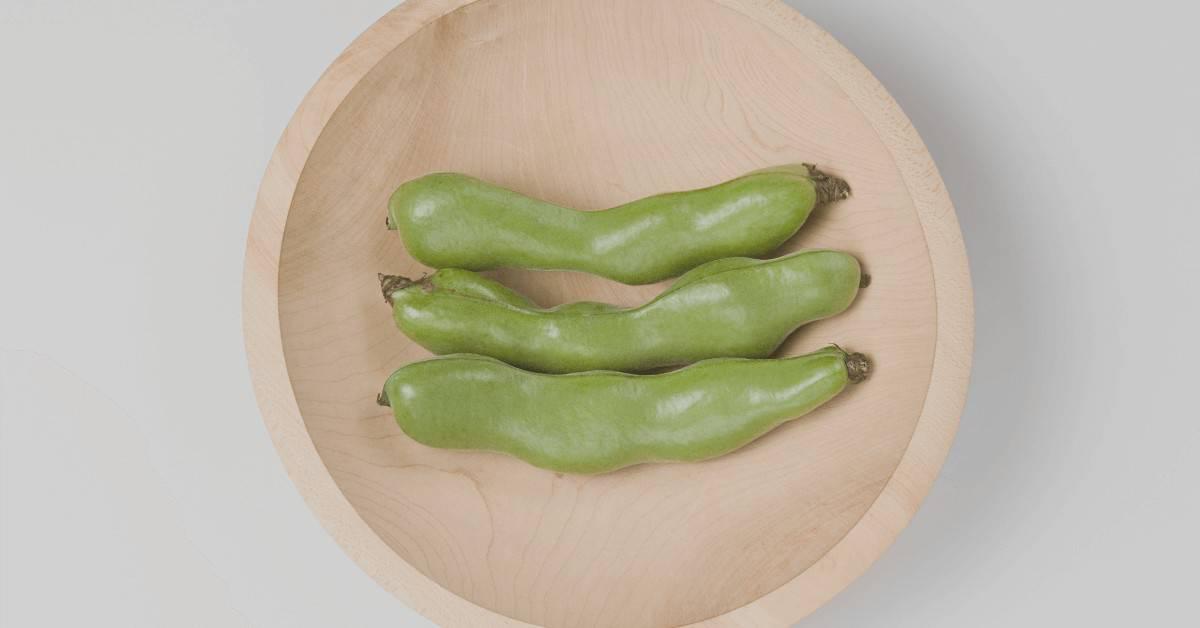Edamame Plant Based Protein Vegan Protein