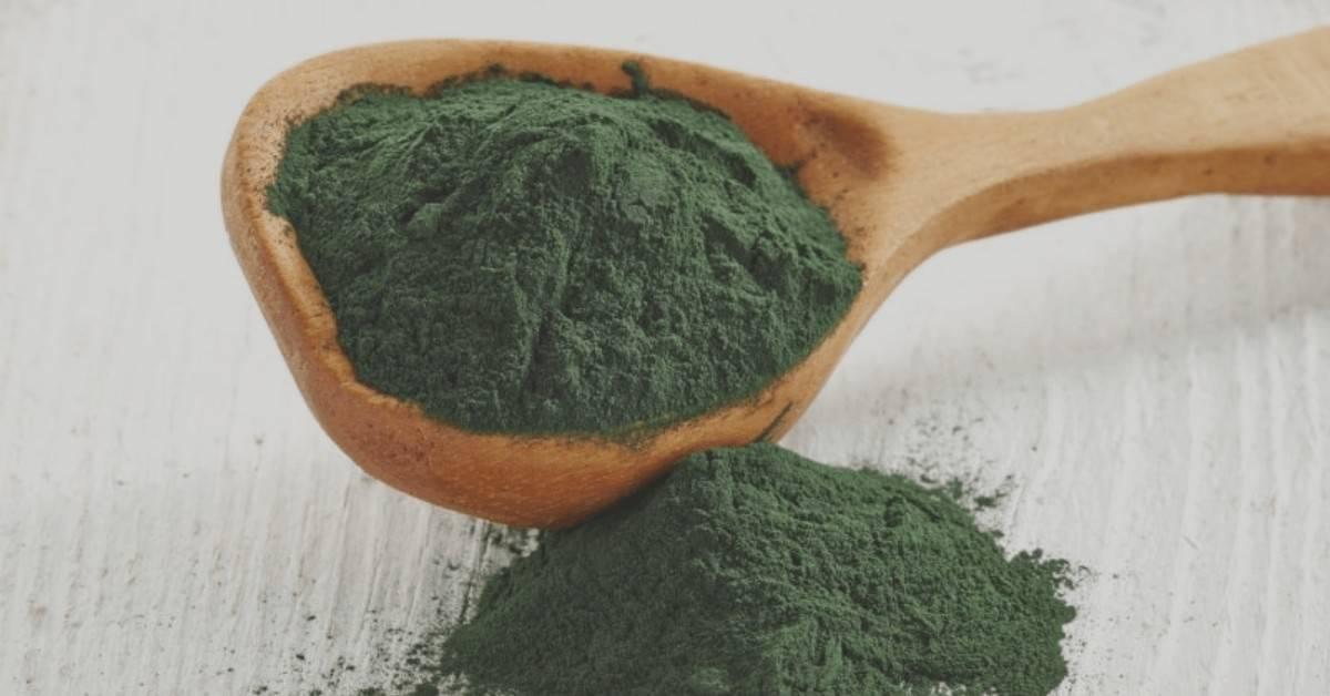 Spirulina Plant Based Protein Vegan Protein
