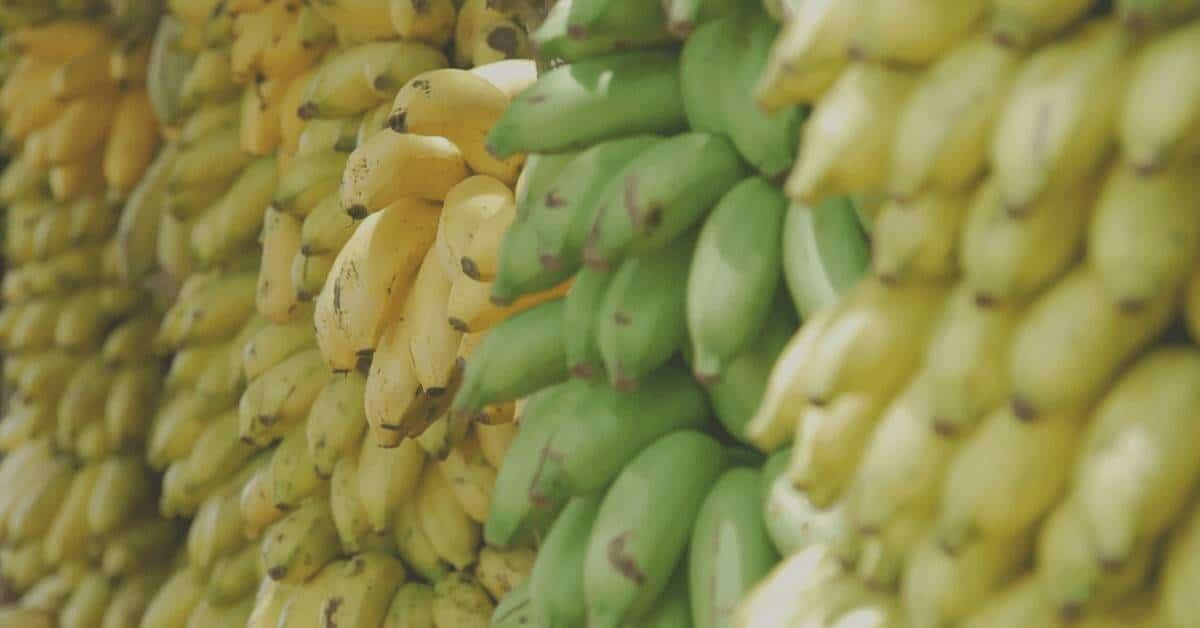 Bananas Electrolyte