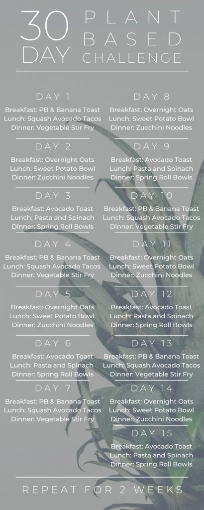 30 Day Plant Based Challenge Meals List