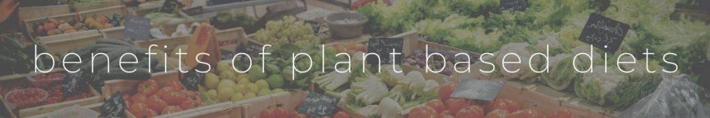 Plant Based Diet Benefit